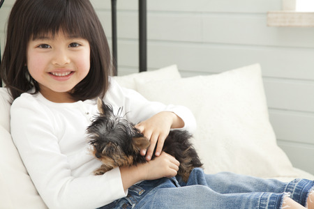 Girl smile have a Yorkshire Terrier Stock Photo