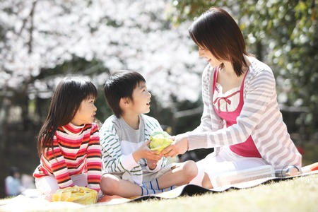 blossom time: Mother to pass a lunch to children under the cherry tree Stock Photo