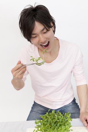 herbivorous: Herbivorous men eat a pea sprout