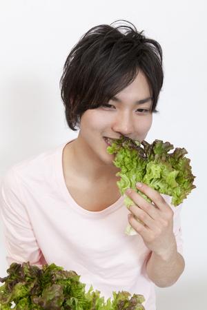 herbivorous: Herbivorous men eat lettuce