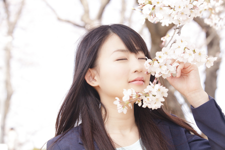 Women smell the scent of cherry blossoms Stock Photo