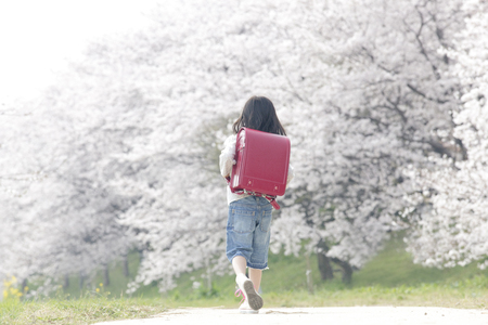 back shot: Back shot of a girl walking Sakurazutsumi Stock Photo