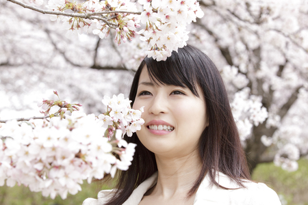Women who approach the face in cherry blossoms