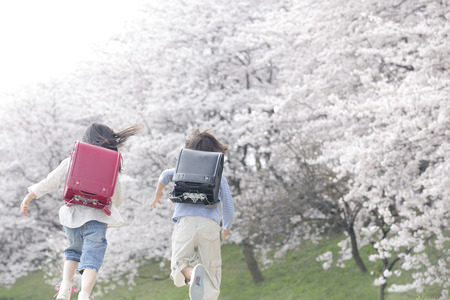 Back view of elementary school students running the cherry trees Stok Fotoğraf