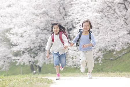 小学生が桜の木を実行します。