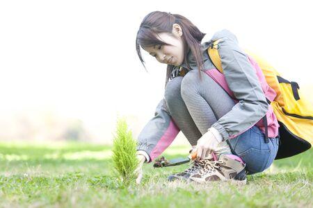 Women to plant trees Stock Photo