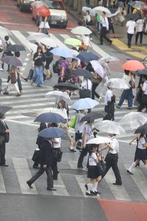 pedestrian crossing: Those who cross the pedestrian crossing Editorial