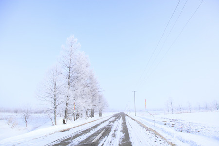 winter road: One of the winter road