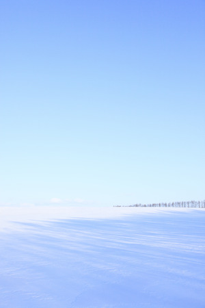 no snow: Snowy field and a blue sky