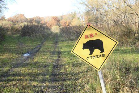 haunt: Bear haunt of signboard