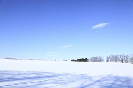 snowy field: Snowy field and a blue sky