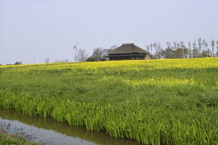 prefecture: Fukushimagata, Niigata Prefecture