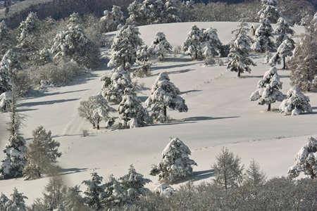 rancho: Rancho de invierno Foto de archivo