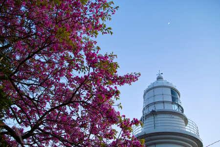 hokuriku: Saruyama lighthouse