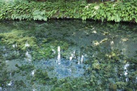 source d eau: Source d'eau Shirakawa Banque d'images