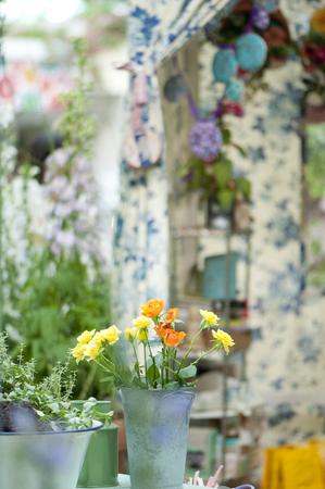 tin: Roses that you go to tin vase Stock Photo