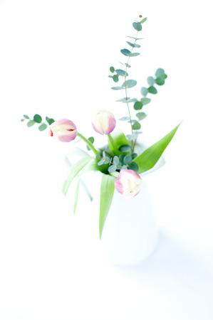 チューリップとユーカリのいたずらな花瓶