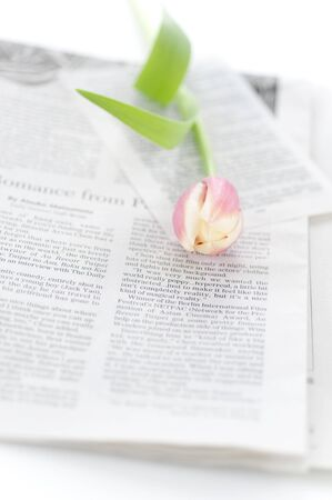 チューリップと英字新聞 写真素材