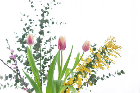 arreglo floral: arreglo floral de tulipanes de Foto de archivo