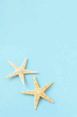 Starfish taken in blue background Stock Photo