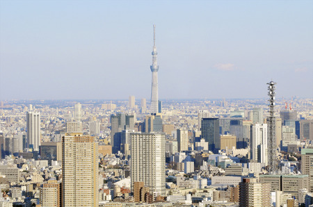birdseye view: Tokyo cityscape of birds-eye view with a view of the Sky Tree