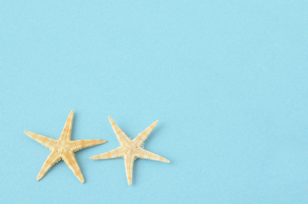 are taken: Starfish taken in blue background Stock Photo