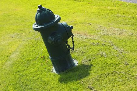 borne fontaine: Vert bouche d'incendie Banque d'images