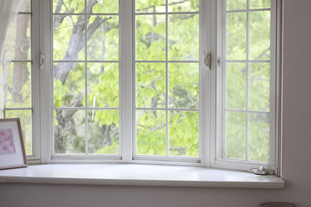 Bay window landscape of