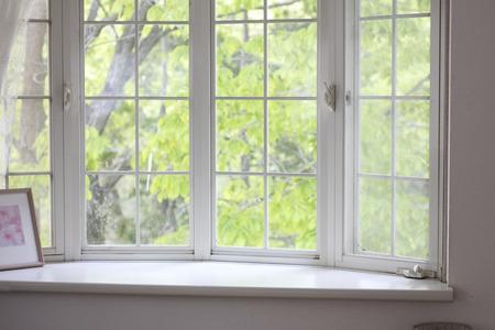 Bay window landscape of