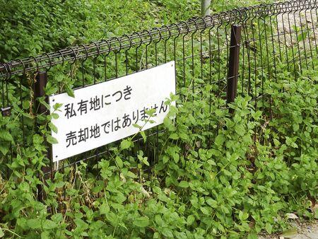 vacant land: Vacant land