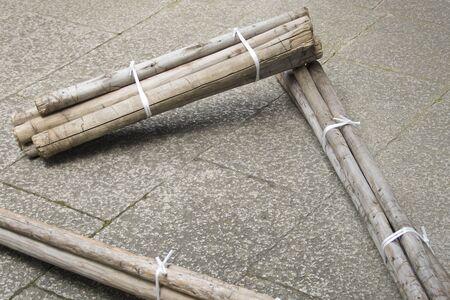 bundled: The bundled logs
