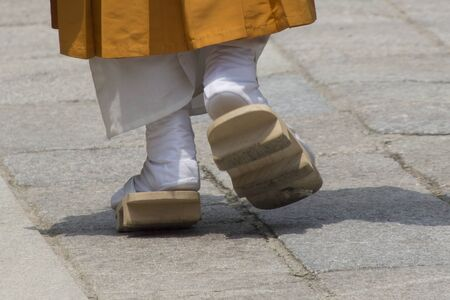 clogs: Clogs and white socks