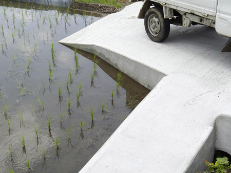 solidified: Parking in the rice field, which solidified with concrete