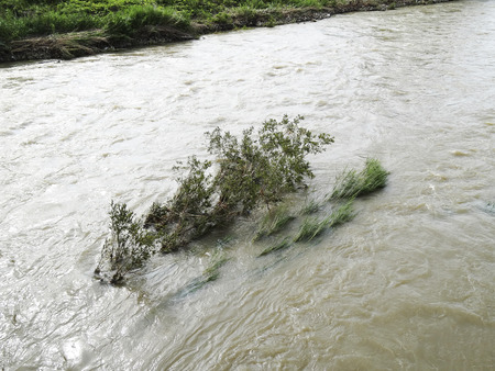 大雨の後の増水した川