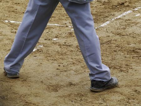 umpire: Leg of plate umpire of grass baseball