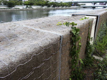 bank protection: Curing net for the greening of the river bank protection