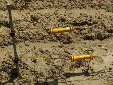 electric fence: Electric fence of harmful beast approach prevention of rice fields