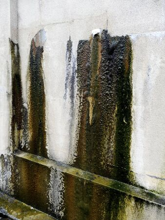 ooze: The leakage ooze from the concrete wall