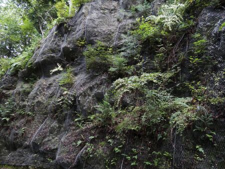 rockfall: Rockfall prevention nets of mountain road