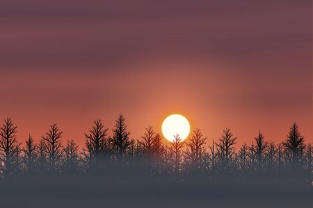 rising dead: Winter forest and Asahi Stock Photo