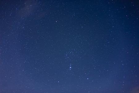 orion: Orion Stock Photo