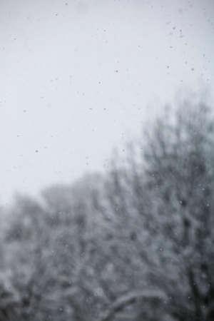 neige qui tombe: Falling Snow