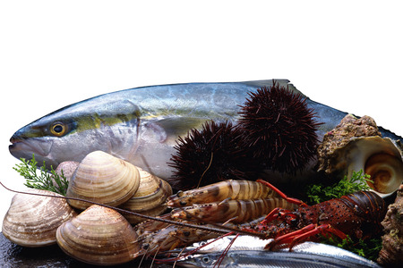 expensive food: Marine products