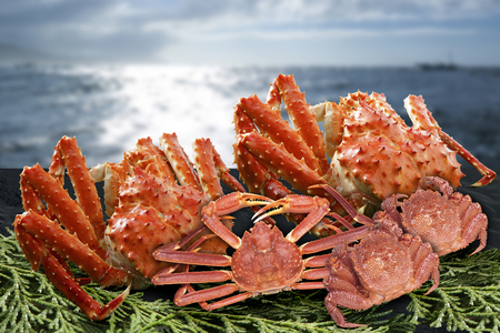 expensive food: Crab