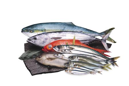 Zeevruchten Stockfoto