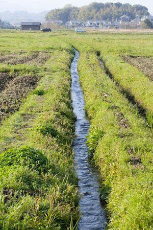 vacant lot: Irrigation canals