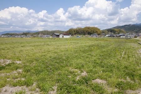 ruins: Ishigami ruins