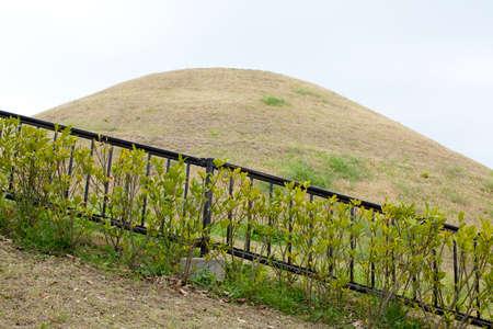 tumulus: Takamatsuzuka Tomb