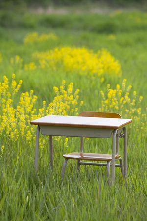 desk: School desk Stock Photo