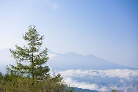 mid morning: Yatsugatake and the sea of clouds